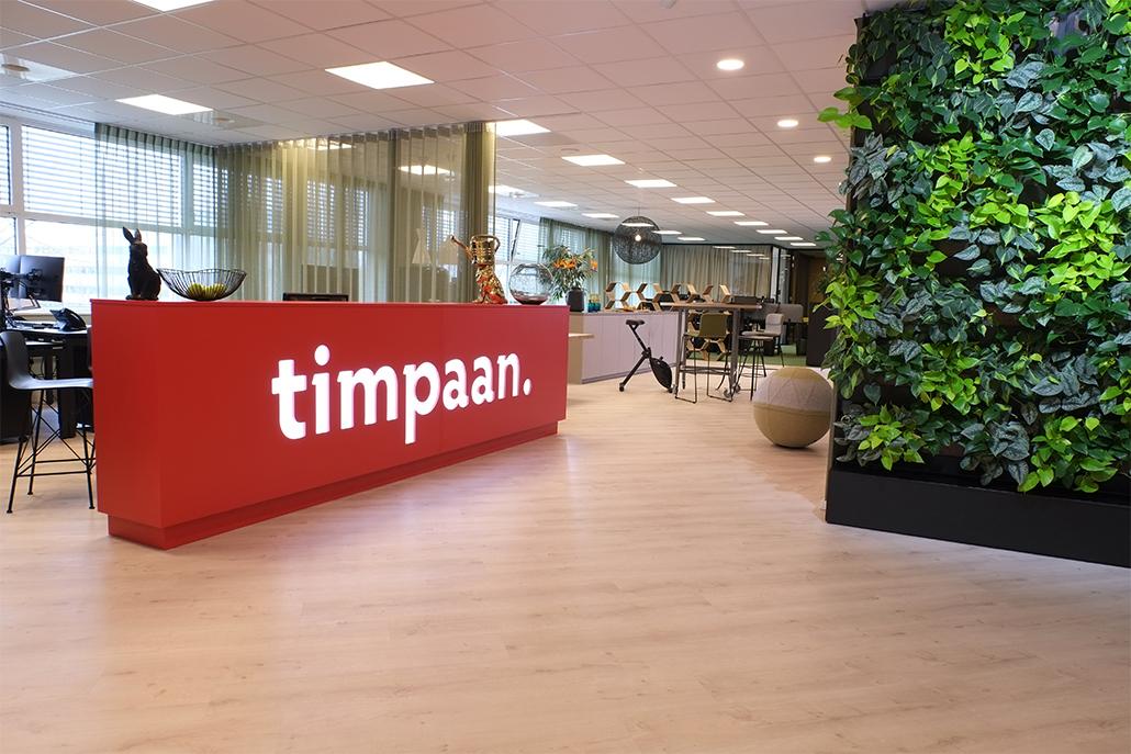 tarzan projekten, tarzan, interior ideas, jane stroink, stroink, jane, Hoofddorp, Timpaan, Timpaan vastgoed,